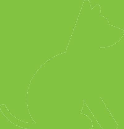 dog_green